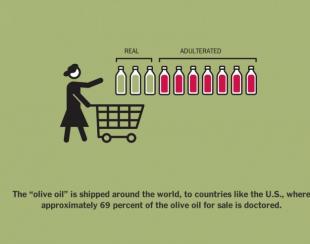 il new york times e l adulterazione dell olio extravergine italiano