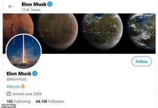 elon musk mette la parola bitcoin sulla bio di twitter