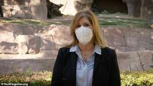 lisa peterson direttrice dello zoo di san diego