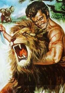 zan re della giungla