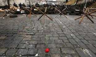 Una rosa rossa fra le barricate