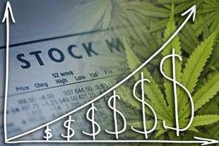 cannabis stocks 1