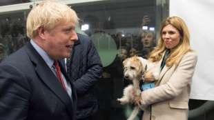 carrie symonds boris johnson e il cane dilyn 2