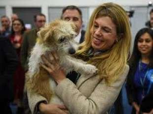 carrie symonds e il cane dilyn 1