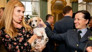 carrie symonds e il cane dilyn 6