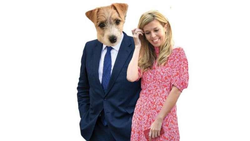 carrie symonds e il cane dilyn 7