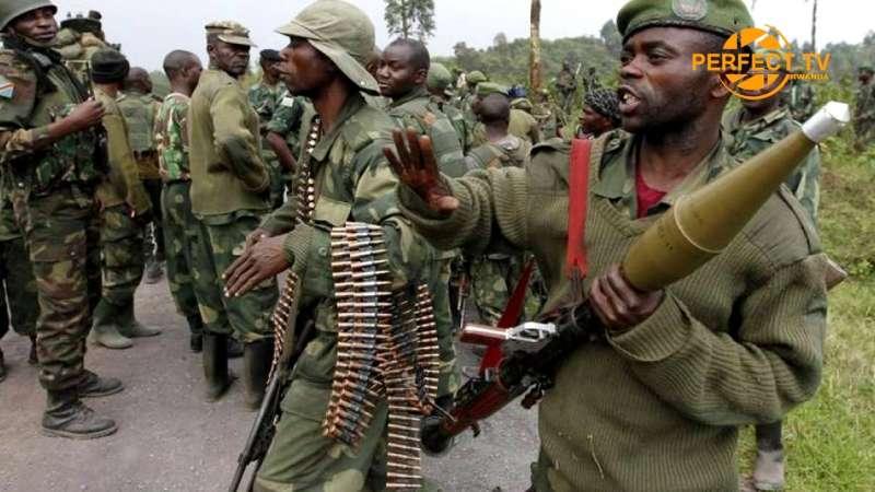 fdlr foca forze democratiche per la liberazione del ruanda 1