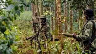 fdlr foca forze democratiche per la liberazione del ruanda 2