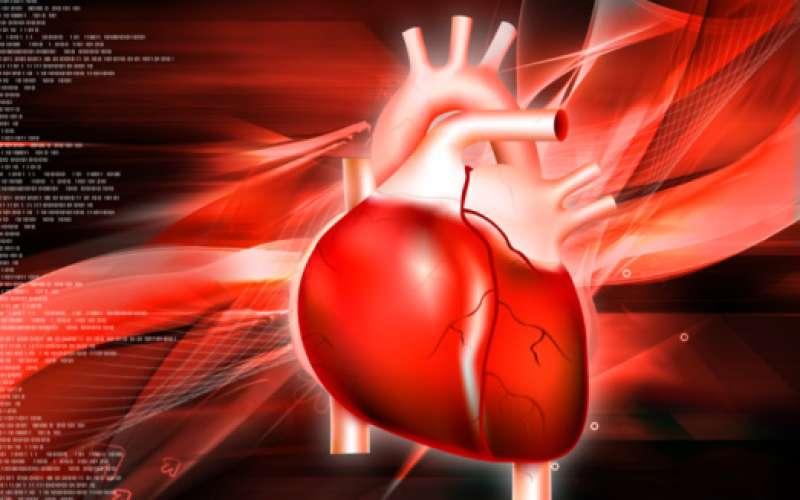 linea piatta cuore 6