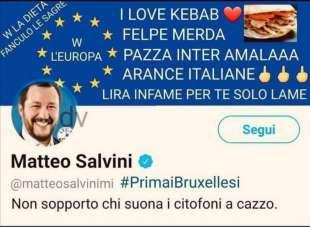 salvini europeista meme