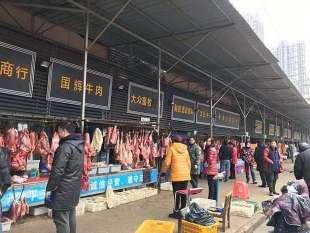 mercato di wuhan 1
