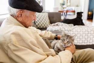 anziano e gatto 7