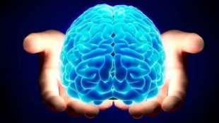 dieta per potenziare il cervello 6