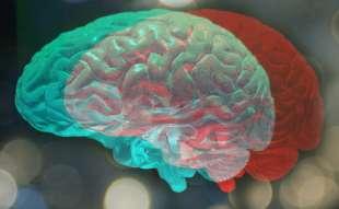 dieta per potenziare il cervello 7