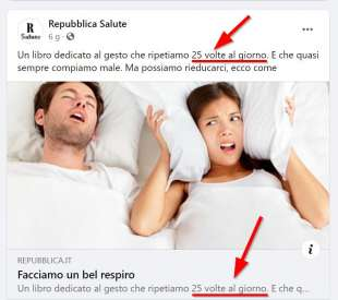 La Repubblica respira 25 volte al giorno