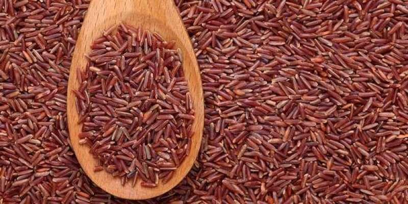 riso rosso fermentato 3