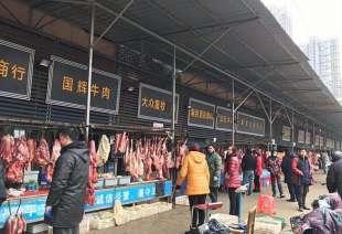 mercato wuhan 1