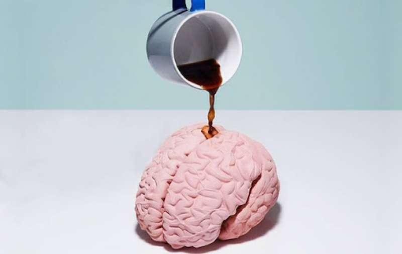 caffe cervello