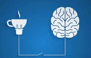 caffe cervello 3
