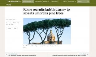 La pagina del Times