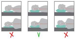 supporto colonna vertebrale cuscino