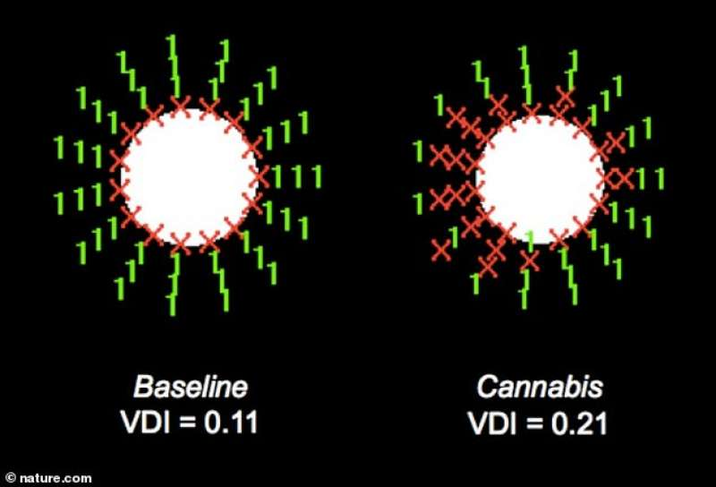 test oculari cannabis