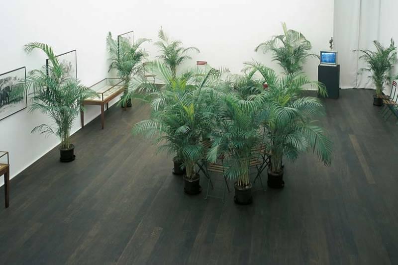 marcel broodthaers un jardin d 39 hiver dago fotogallery. Black Bedroom Furniture Sets. Home Design Ideas