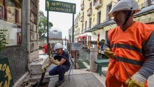 cablaggio venezia