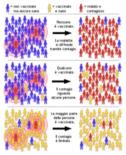 immunita di gregge 1