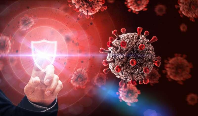 immunita di gregge 4
