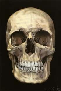 Skull Beneath the Skin Damien Hirst