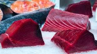 tonno rosso 1