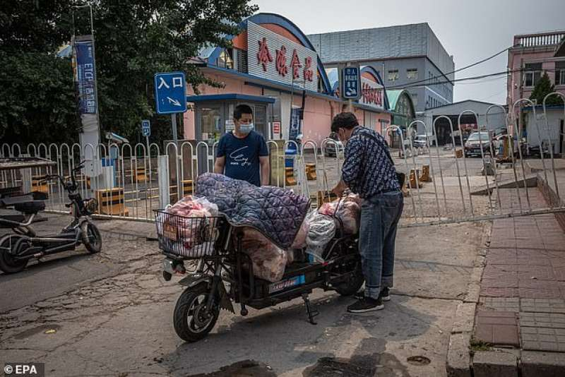 mercato xinfadi a pechino
