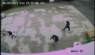 un fermo immagine del video che mostra lo zio e due cugini di saman abbas