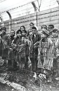 ZINGARI AD auschwitz enfants