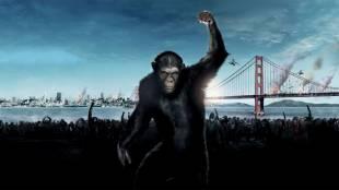 apes revolution