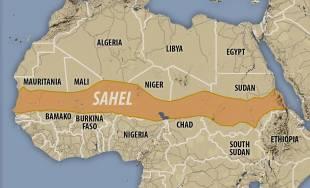 area shael
