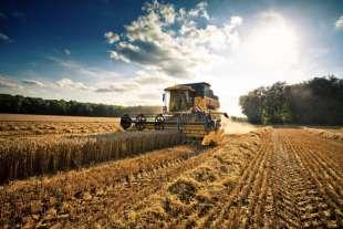 agricoltura 7