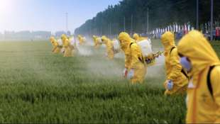 pesticidi 2