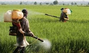 pesticidi 6