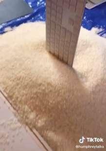 la ricchezza di jeff bezos in chicchi di riso su tiktok 2