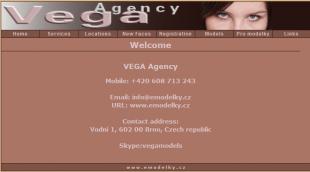 vega agency (1)