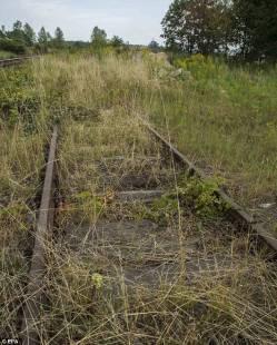 ferrovia wroclaw walbrzych