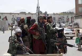 afghanistan gruppo di talebani