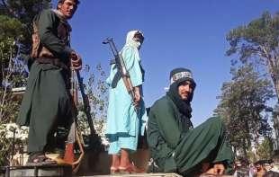 talebani 5