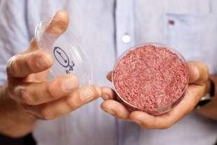 mosa meat