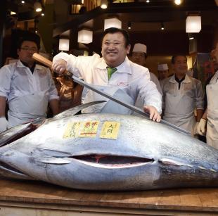 tonno tsukiji 1
