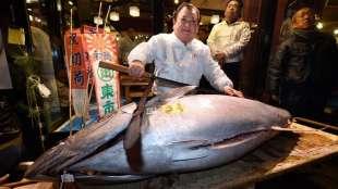 tonno tsukiji 3