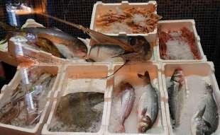 il pescato del nazareno