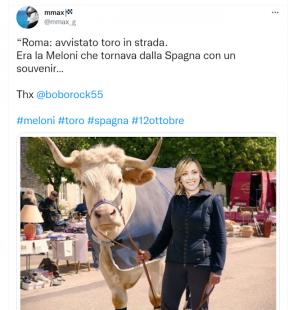 tweet sul toro a roma 1